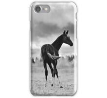 Foal iPhone Case/Skin
