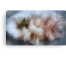 The Softness of Roses Canvas Print
