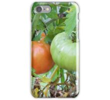 Tomatoes in the Garden Photograph iPhone Case/Skin