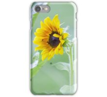 Sunflower Photograph iPhone Case/Skin