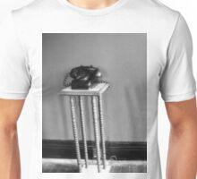 Trans-Allegheny Lunatic Asylum Unisex T-Shirt