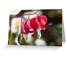 flower in spring Greeting Card