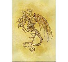 5x Dragon Photographic Print