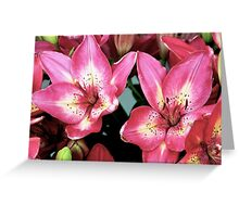 Lilies Of the Island Greeting Card