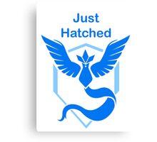 Just Hatched - Mystic Canvas Print