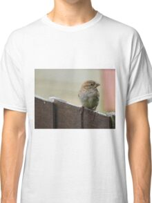 Sparrow on Fence Classic T-Shirt