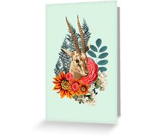 Beauty Antilope Greeting Card