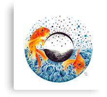 Blye Goldfish Eye Canvas Print