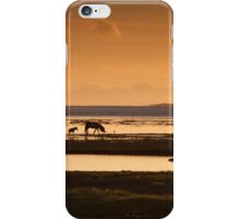 Marsh ponies Loughor estuary iPhone Case/Skin