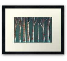Night and Day Framed Print