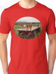 Goats on a trailer having fun Unisex T-Shirt