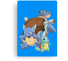 Squirtle Evol Canvas Print