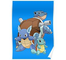 Squirtle Evol Poster