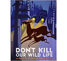 Vintage poster - Don't Kill Our Wildlife Photographic Print