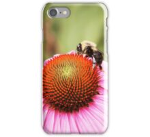 Pink Daisy With Bee iPhone Case/Skin