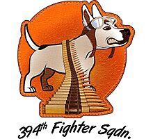394th Fighter Sqdn. Photographic Print