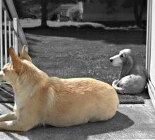 Dog on Porch Sticker