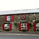 Nancy's Barn and Coffee Shop by Shulie1
