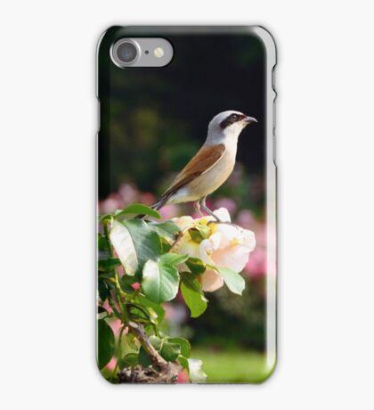 I Like Roses iPhone Case/Skin