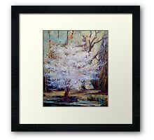FUMC Cherry Trees, oil on canvas Framed Print