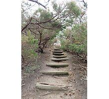 Kings Park Bluff, Green Belt Trail Photographic Print