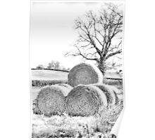Hay Bales In Countryside Poster