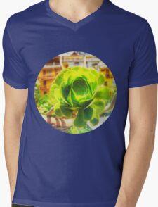 Succulent Mens V-Neck T-Shirt
