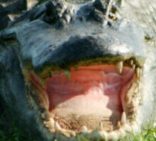 Gator Smile Sticker