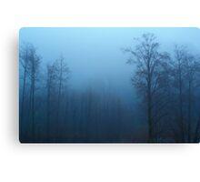Forest Fog - San Bernardino, California Canvas Print