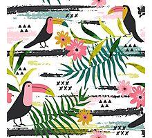 Tropical toucan Photographic Print