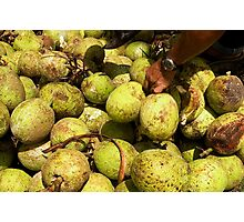Breadfruit Mound - Pohnpei, Micronesia Photographic Print