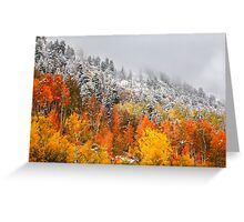 Fall to Winter Greeting Card