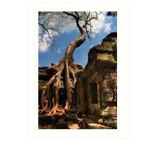 Ta Prohm Strangler Fig - Ta Prohm, Cambodia Art Print