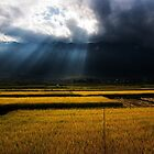 Afternoon Storm - Dali, China by Alex Zuccarelli