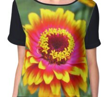 Bright Zinnia Flower  Chiffon Top