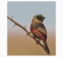 Blackcheeked Waxbill - Finding Thorny Solitude Kids Clothes