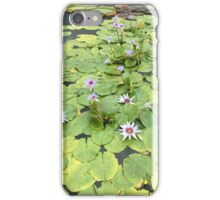 Lovely Lily Pads iPhone Case/Skin