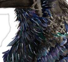 Eyes of Huginn Sticker