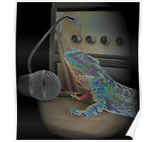 Bearded dragon rock music Poster