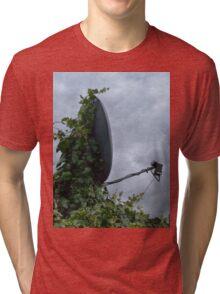 The Ivy is winning Tri-blend T-Shirt