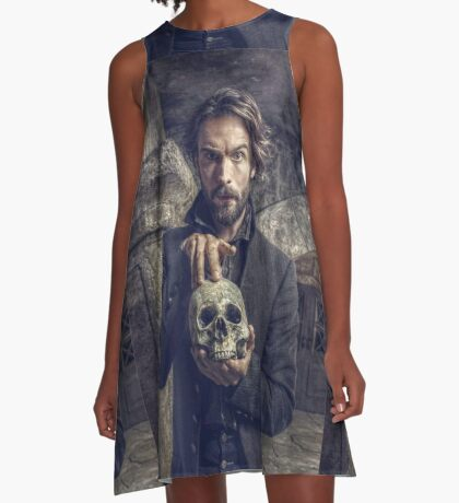 Ichabod and Friend A-Line Dress