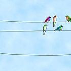 Little Birds by BonniePortraits