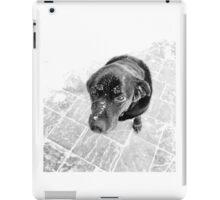Puppy Dog Eyes iPad Case/Skin