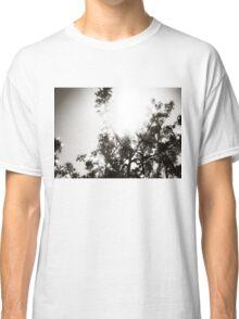 Apple Tree Sunburst Classic T-Shirt