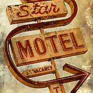 Vintage Star Motel Sign by Honey Malek
