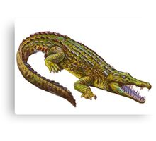 Vintage Crocodile Canvas Print