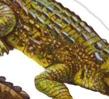 Vintage Crocodile Sticker