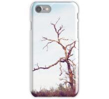 Tree-Bidwell Park iPhone Case/Skin