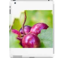 Grape Vine 4 iPad Case/Skin