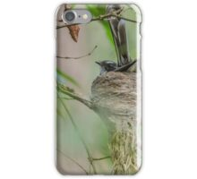 Fantail in nest iPhone Case/Skin